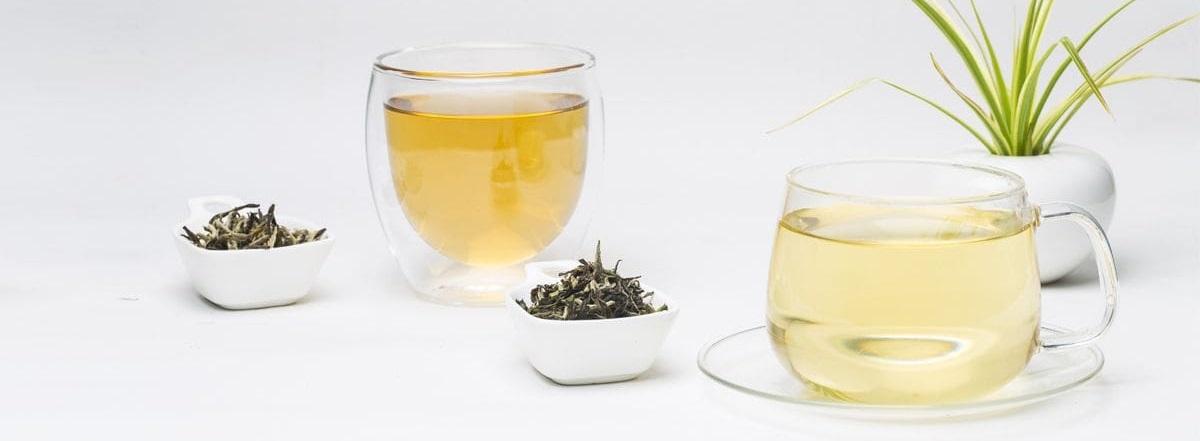 ¿Qué es el té blanco?